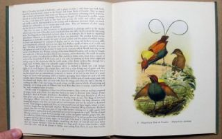 1948 1st Edition Tropical Birds Plates by John Gould Batsford Book